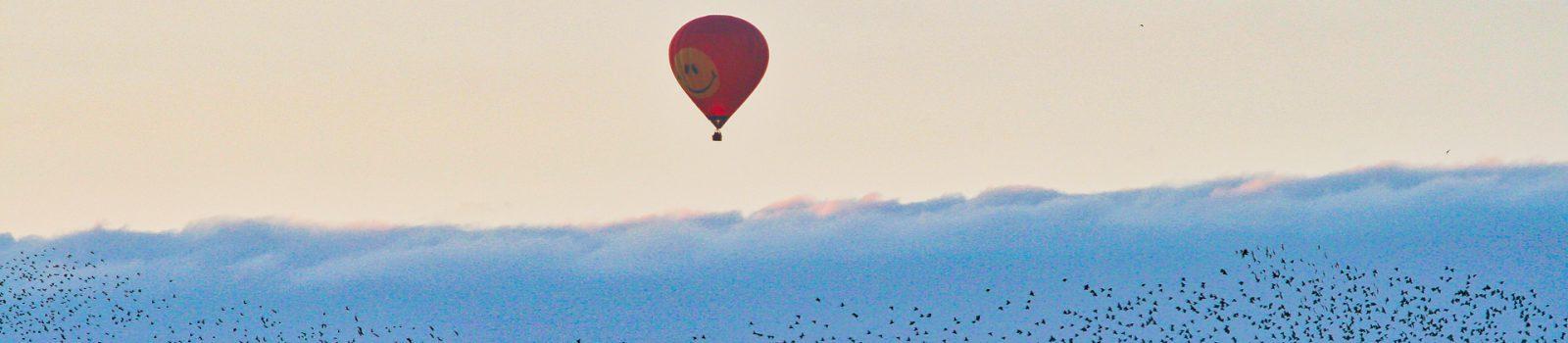 Luchballon met spreeuwen 1920x420
