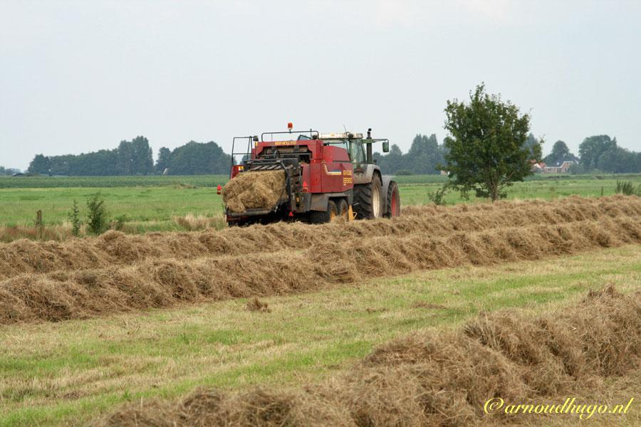 Hooien in Friesland